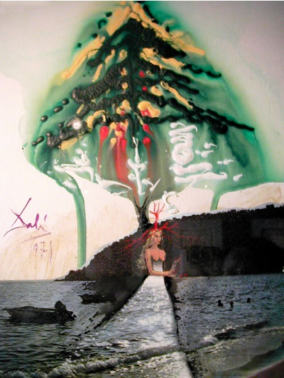 Navidad, Dali, 1971