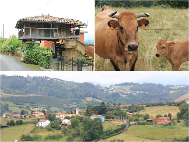 Beautiful Asturian countryside